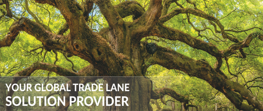 AsstrA is Your global trade lane solution provider